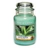 Aloe Water (Duży słoik)
