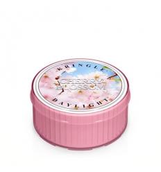 Cherry Blossom (świeczka)