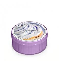 Vanilla Lavender (świeczka)