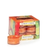 Fruit Fusion (Tealight)