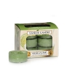 Vanilla Lime (Tealight)