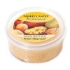 Mango Peach Salsa (Wosk Scenterpiece)