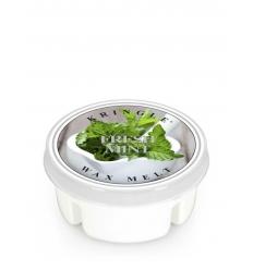 Fresh Mint (Wosk)