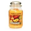 Mango Peach Salsa (Duży słoik)