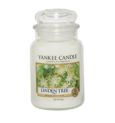 Linden Tree (Duży słoik)