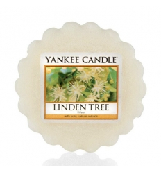 Linden Tree (Wosk)