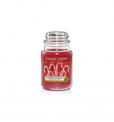 Cranberry Peppermint (Duży słoik)