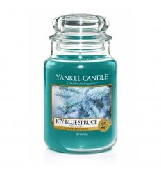 Icy Blue Spruce (Duży słoik)
