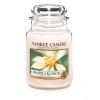 Champaca Blossom (Duży słoik)