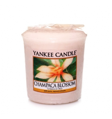 Champaca Blossom (Sampler)