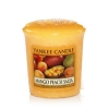 Mango Peach Salsa (Sampler)