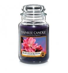 Black Plum Blossom (Duży słoik)