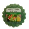 Fruity Melon (Wosk)