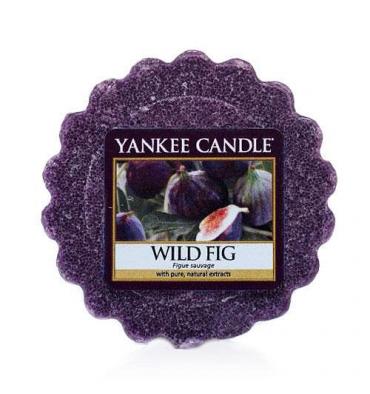 Wild Fig (Wosk)