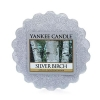 Silver Birch (Wosk)