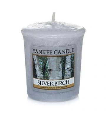 Silver Birch (Sampler)
